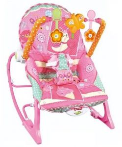 Infant To Toddler Rocker Rocking Chair And Bouncer