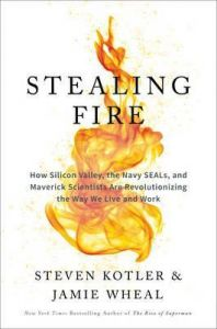 Stealing Fire : How Silicon Valley, The Navy Seals, And Maverick Scientists Are Revolutionizing The Way We Live And Work By Steven Kotler,Jamie Wheal - Hardcover