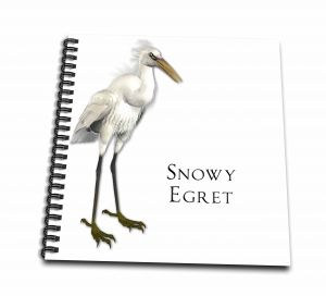 Boehm Graphics Bird Snowy Egret Shorebird Drawing Book 12x12 Memory Book Db515962