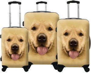 1cb60912c265 Buy luggage pair mountain dog luggage | Chariot,Ed Heck | KSA | Souq