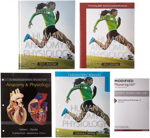 Human Anatomy Physiology Modified Mastering Ap With Pearson