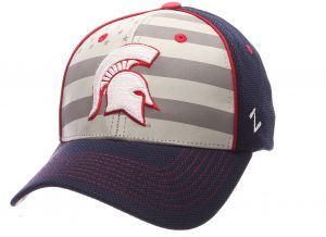 311389af10c227 Zephyr NCAA Michigan State Spartans Adult men Americana ZH Cap ,Medium/Large,Silver/Navy