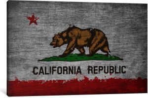 ICanvasART 1 Piece California Flag Grunge Painted Canvas Print By Kane 12 18 075 Deep