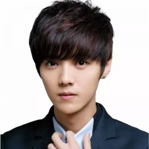 Wig men realistic short hair fleeciness real hair silk invisible male wig